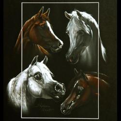 4 TETES ETALONS ARABES (4 arabians stallions heads) - pastel sec (soft pastel) - 30x40cm