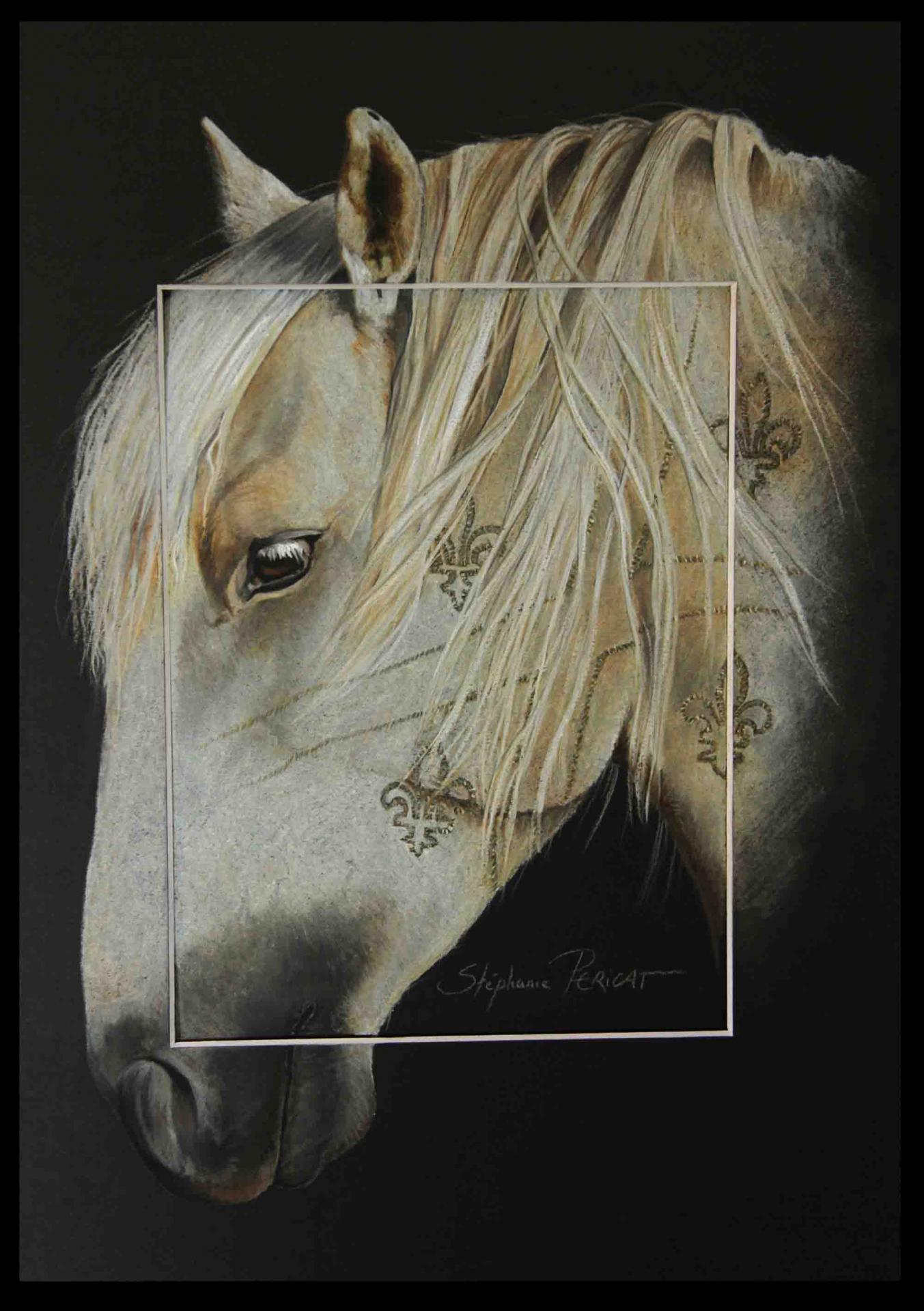 LOU PAIS NADJA ALIAS (Canadian stallion) - pastel sec (soft pastel) - 30x40cm