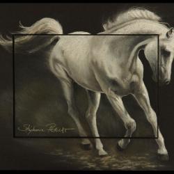 Allure arabe galop (amoroso de salvadora gallup) -  20x30cm