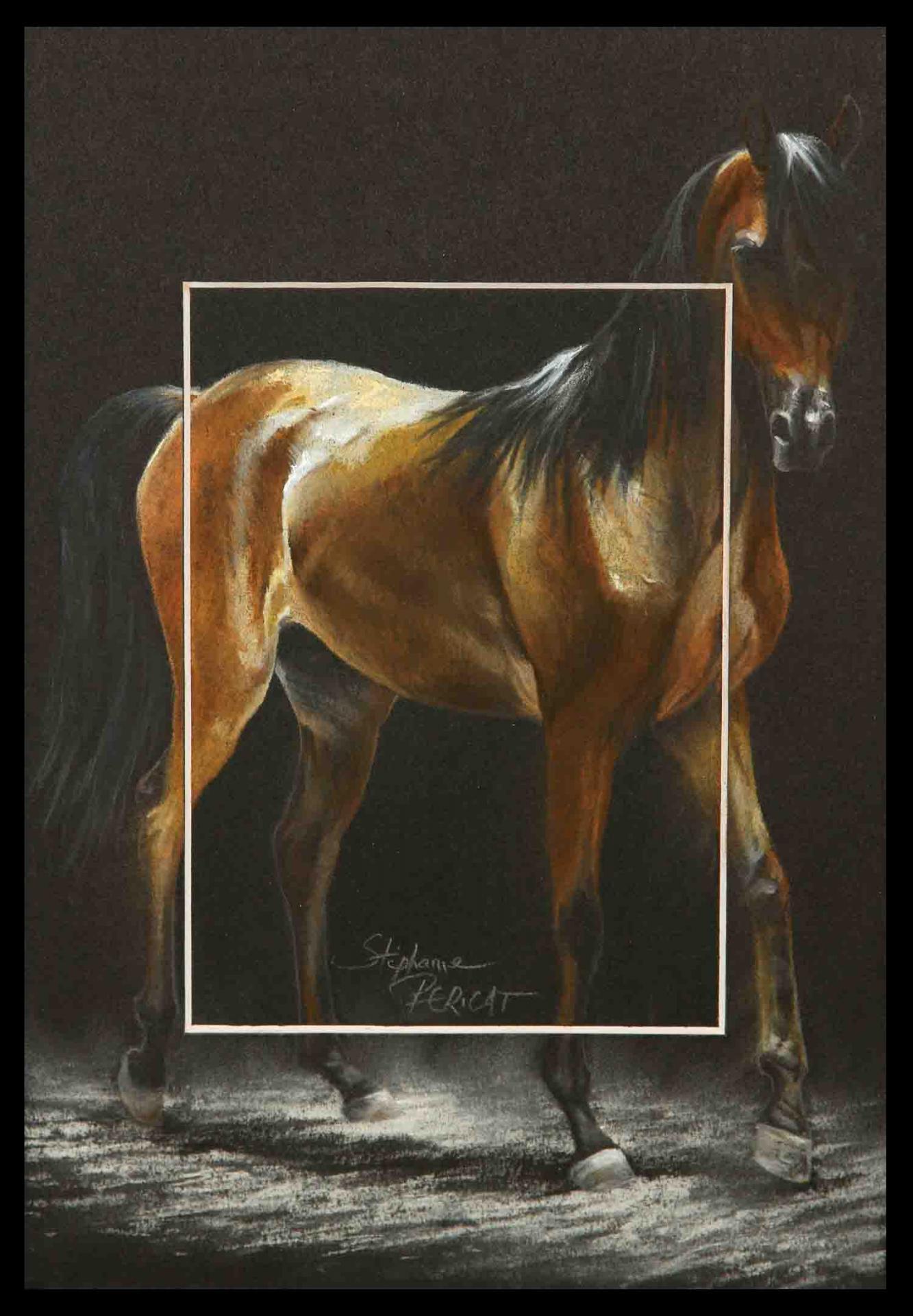 Allure arabe pas (walk of joseph's ekstaja) - 20x30cm