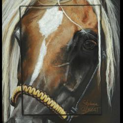 Ayn KHAIRA REJ (eye of khaira rej) - 20x30cm - AV for sale