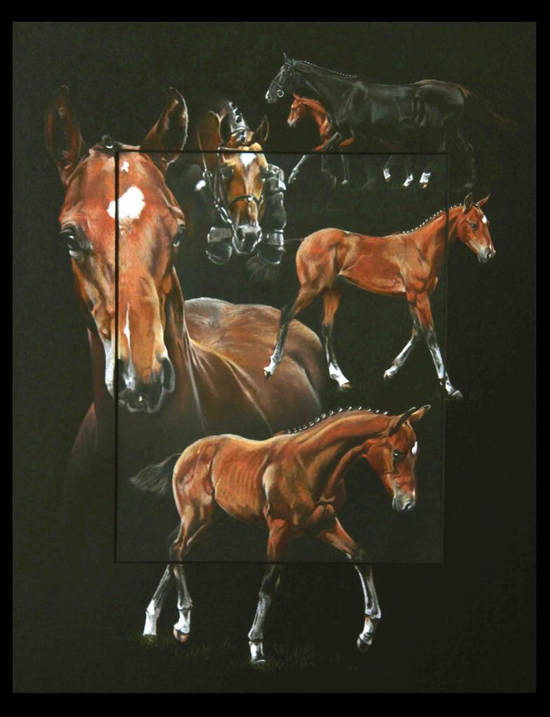 BEEQUICK DE SIENNE, POULAIN (male foal) - pastel sec (soft pastel) - 40x50cm