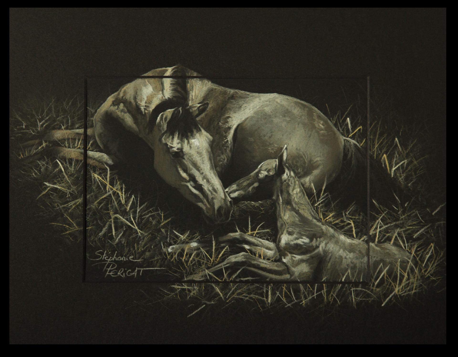BIRTH OF BOOG (naissance de Boog) - pastel sec (soft pastel) - 24x30cm