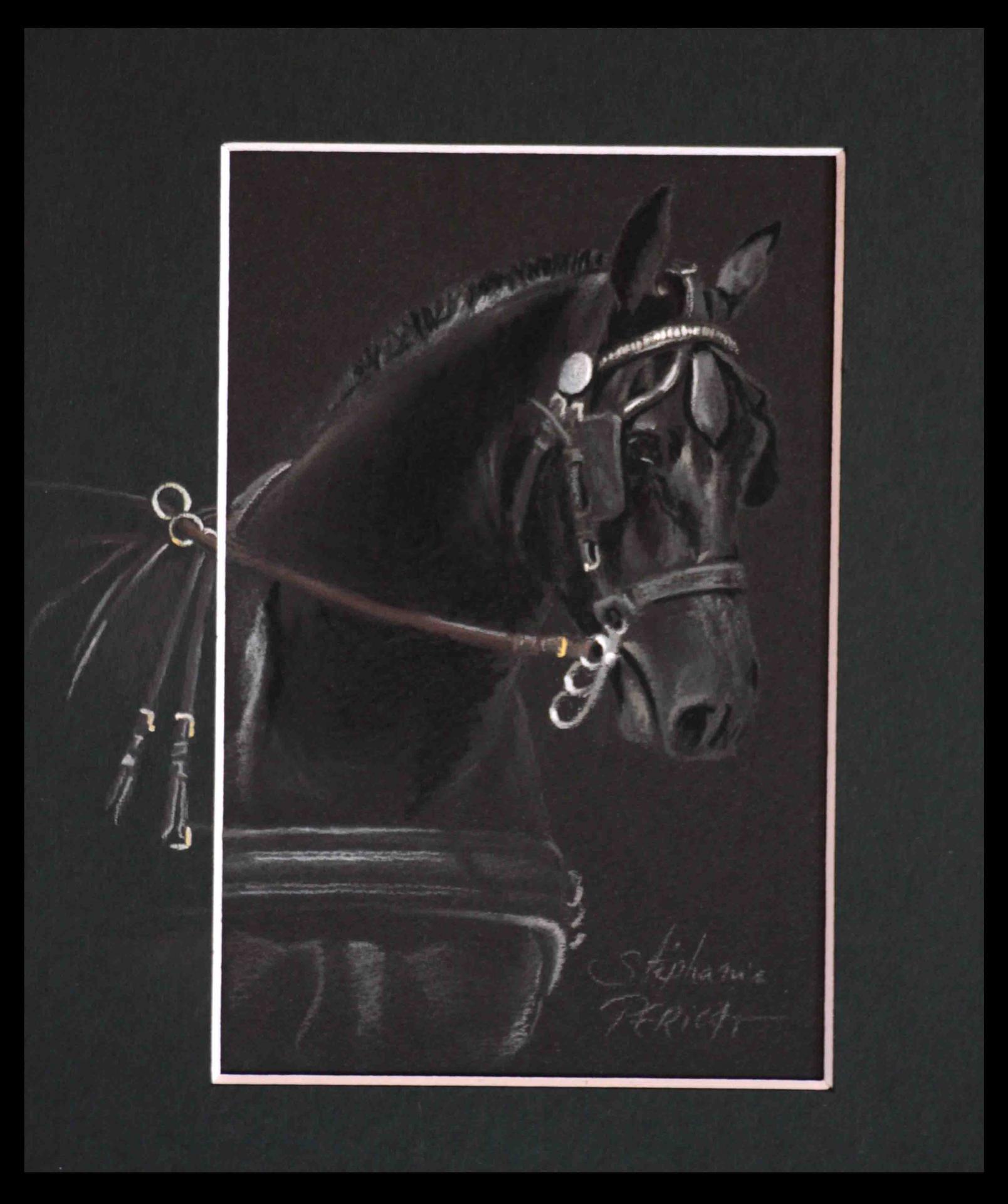 TETE NOIRE COB NORMAND ATTELE (black head norman cob) - pastel sec (soft pastel) - 18x24cm