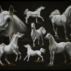 SC DAGASH (stallion) - pastel sec (soft pastel) - 50x70cm