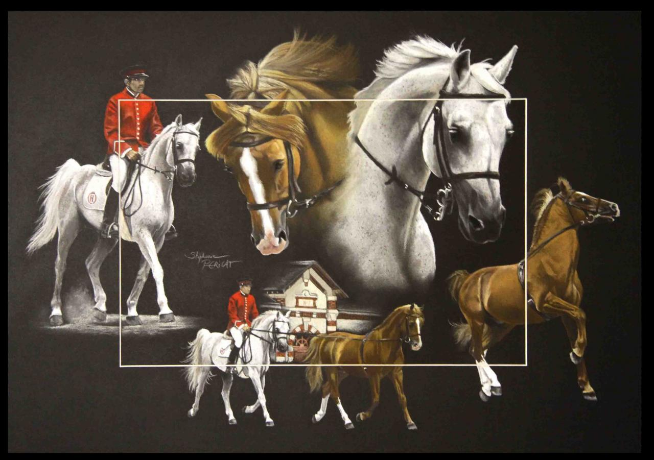 TANDEM ETALONS ARABES NATIONAUX (two nationals stallions) - pastel sec (soft pastel) - 50x70cm - 2015 prix de la commune de Domjean (50)