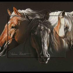 ETALONS CANADIENS ECURIE SARABELLE(canadians stallions of sarabelle's stud) - pastel sec (soft pastel) - 24x30cm