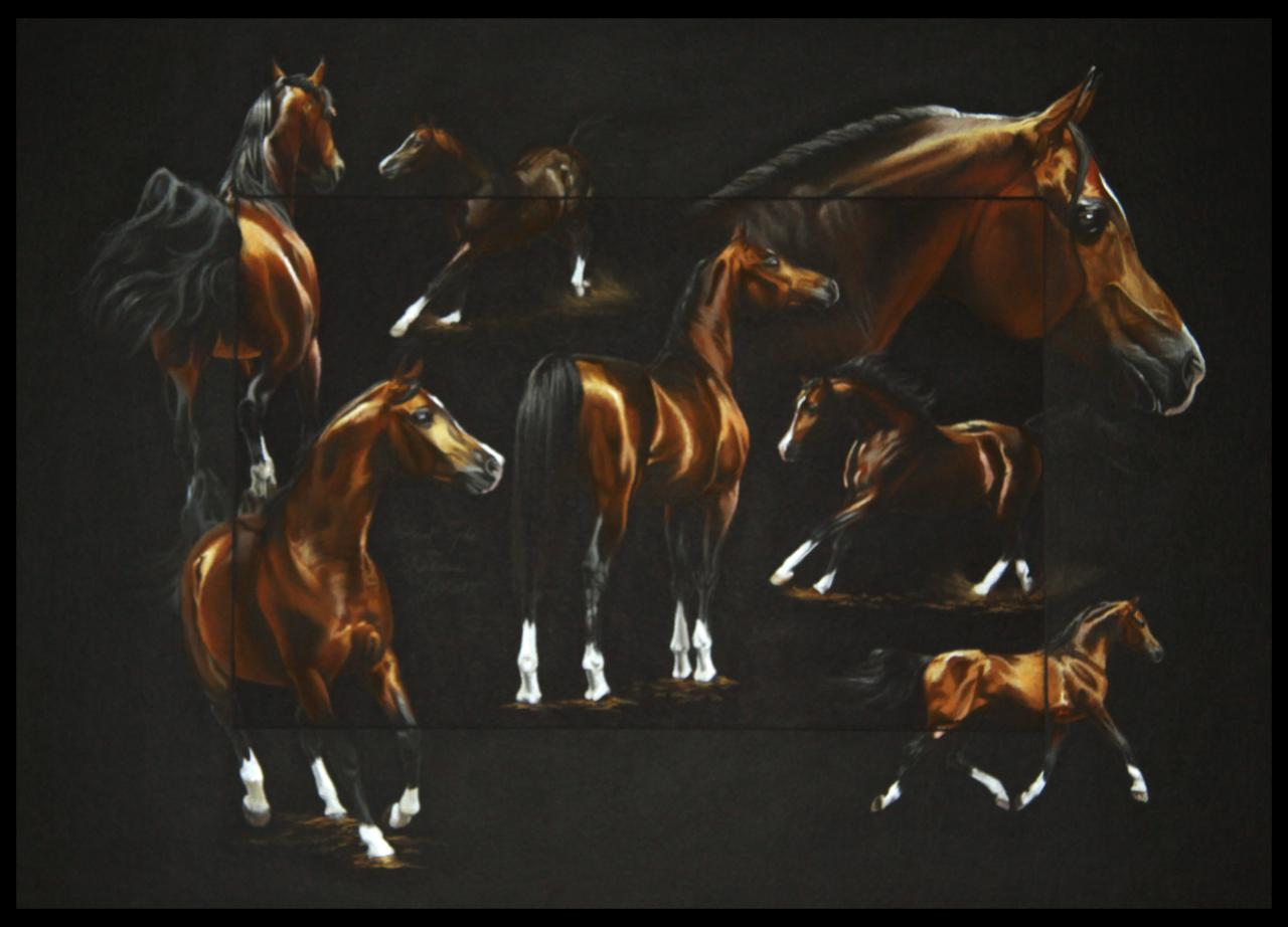 GLORIET PSYCHE (stallion) - pastel sec (soft pastel) - 50x70cm - A V for sale