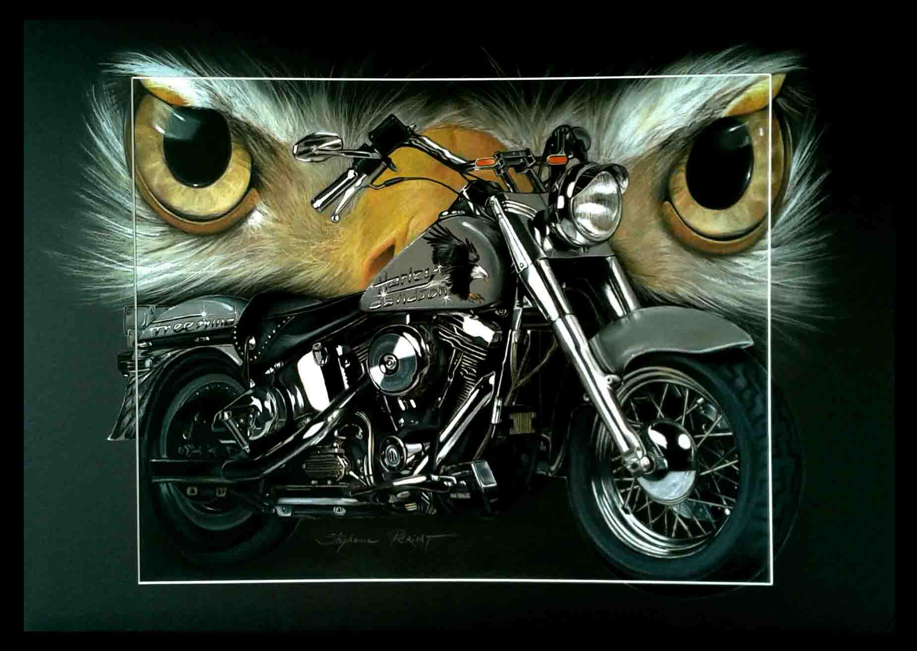 HARLEY AMERICAN EAGLE - pastel sec - 50x70cm - A V for sale