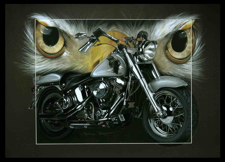HARLEY DAVIDSON 1340 fatboy au pygargue (HD 1340 fatboy with bold eagle) - pastel sec (soft pastel) - 50x70cm - A V for sale