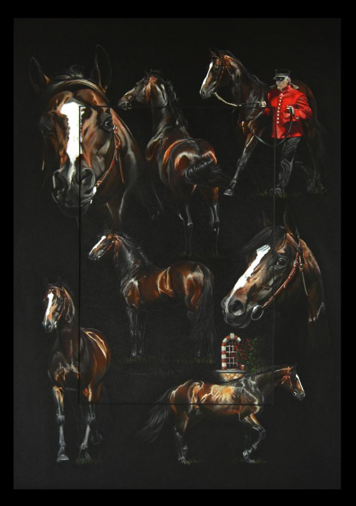 INDIAN DAFFODILL, ETALON NATIONAL (national stallion) - pastel sec (soft pastel) - 50x70cm - A V for sale