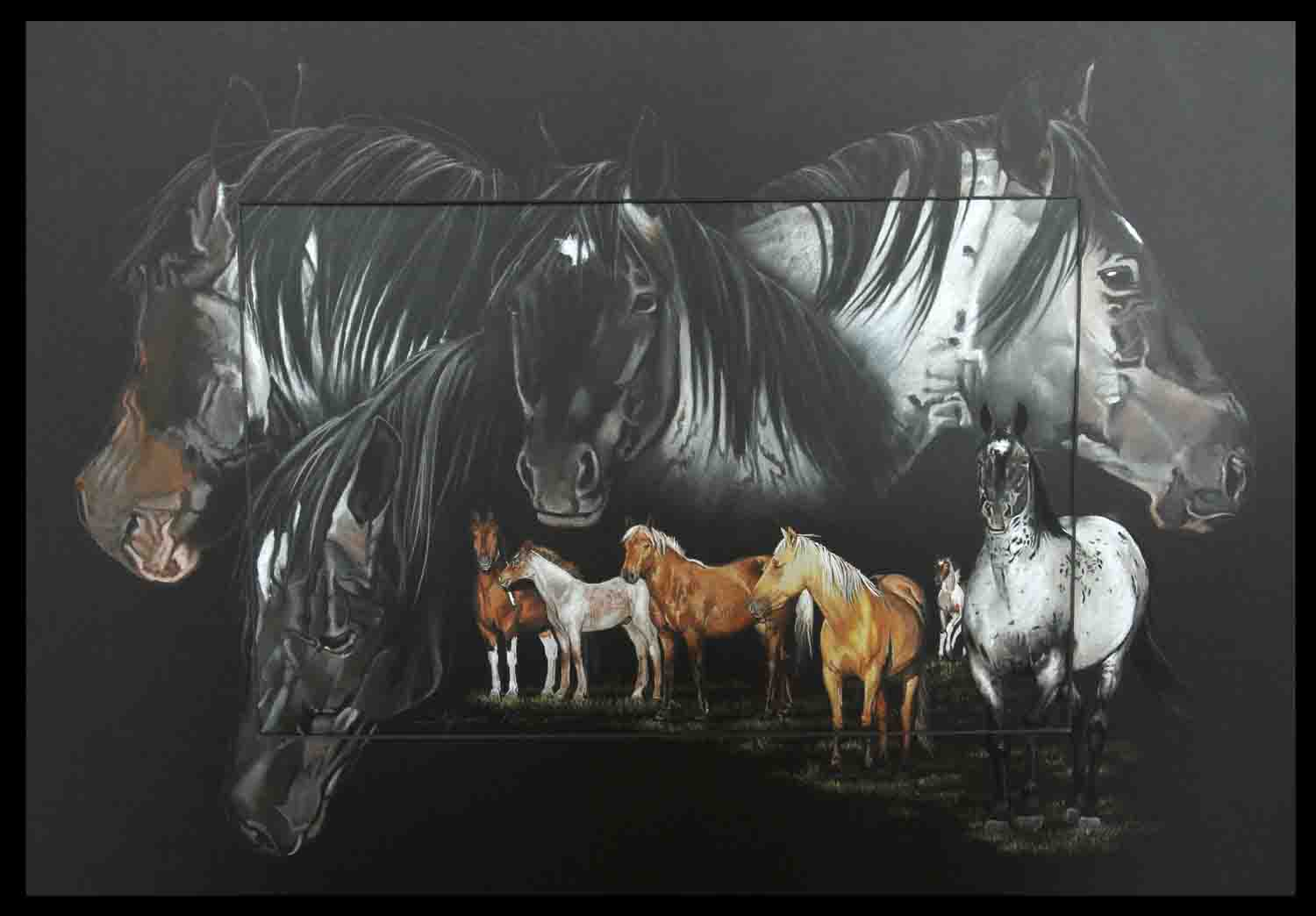 Indigo, mustang stallion - pastel sec - 50x70cm - A V for sale