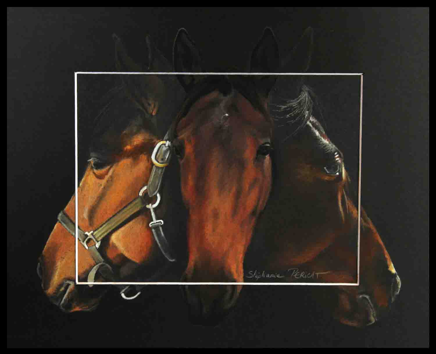 KYO FIRE, STANDARBRED MARE - pastel sec (soft pastel) - 24x30cm