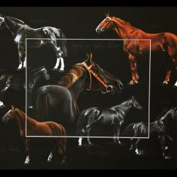 LIGNEE ROSIRE, ETALON NATIONAL (blood of rosire, national stallion) -  40x50cm