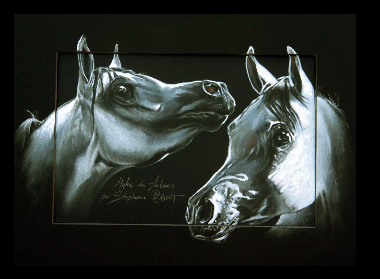 MYTIC DES AUBUES (stallion) - pastel sec (soft pastel) - 30x40cm