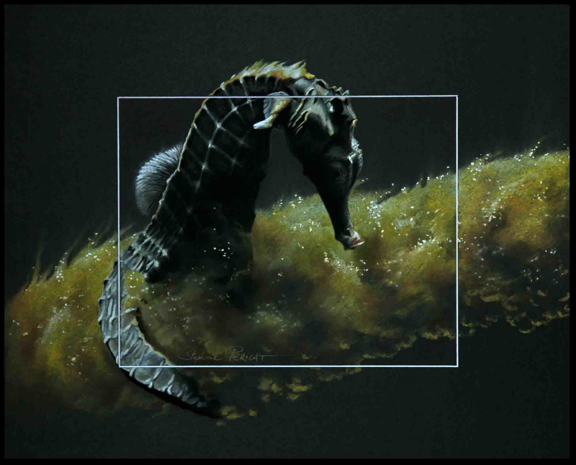 Oceanos Hippocampus I - 40x50cm - AV for sale