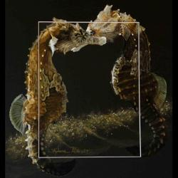 Oceanos Hippocampus II - 30x40cm - AV for sale