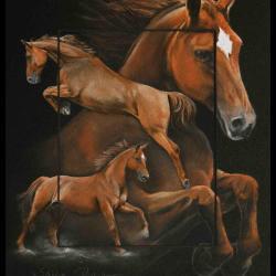 ORPHEE , jument alezane (sorrel mare) - pastel sec(soft pastel) - 24x30cm