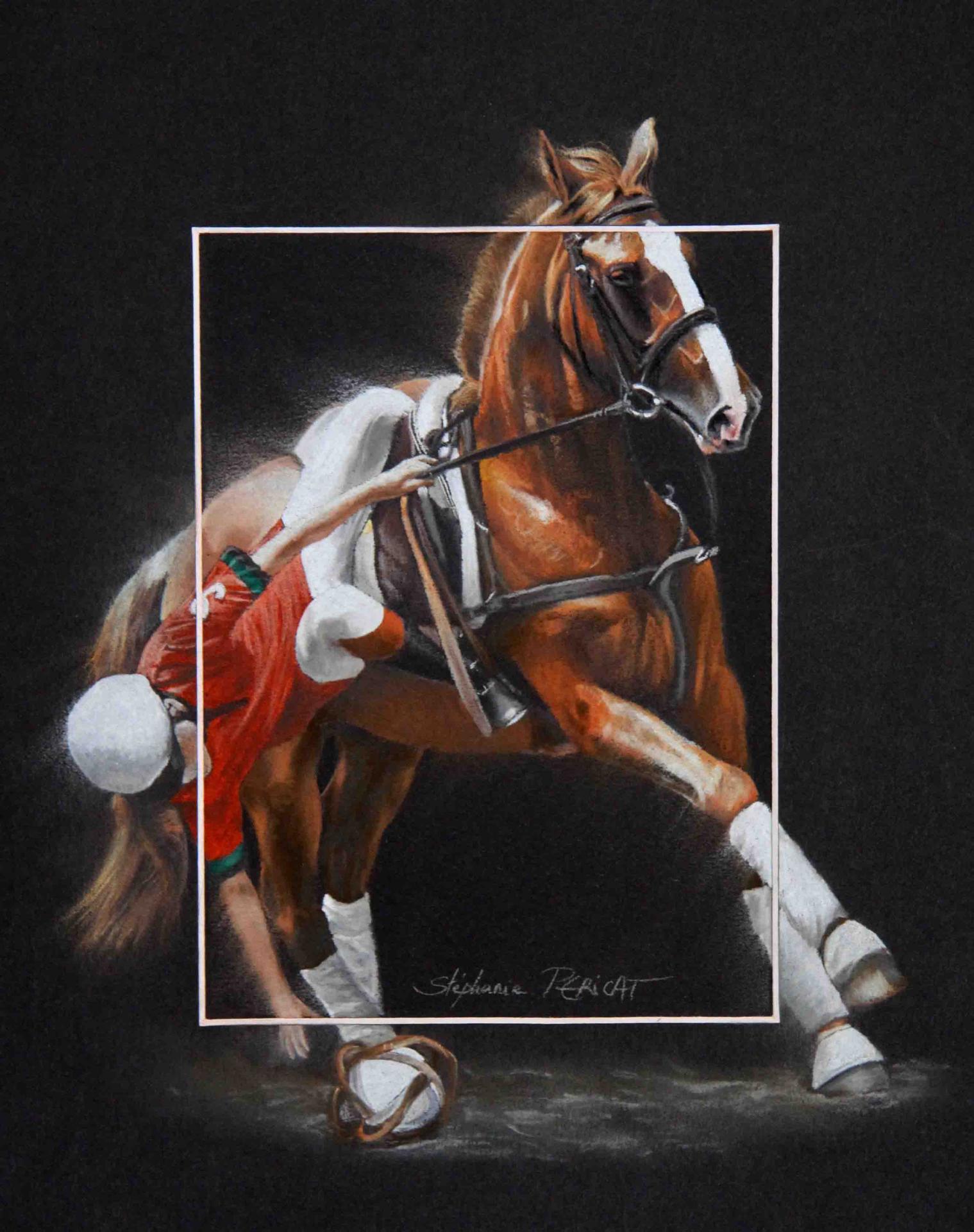 HORSE-BALL RAMASSAGE PORTUGAIS (portuguese) -  24x30cm