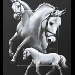 PRESIDENT, ETALON PRIVE (stallion private) - 30x40cm