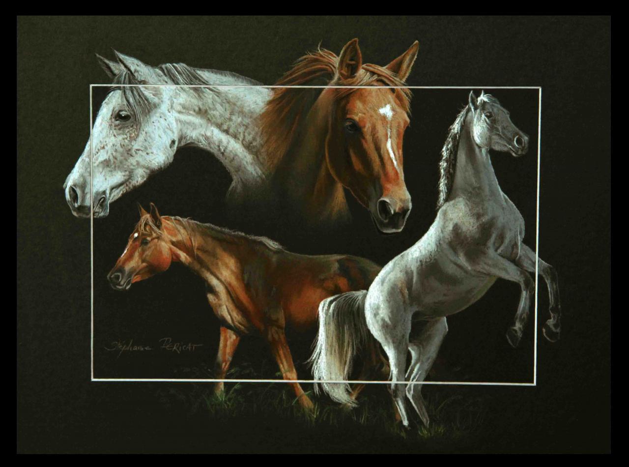 QUALIFA DE CABANS ET ALTESSE DE CABANS (mares) - pastel sec (soft pastel) - 30x40cm