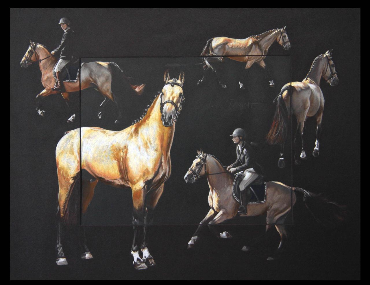 UTWO DE VAUBADON, ETALON (stallion) - pastel sec (soft pastel) - 40x50cm