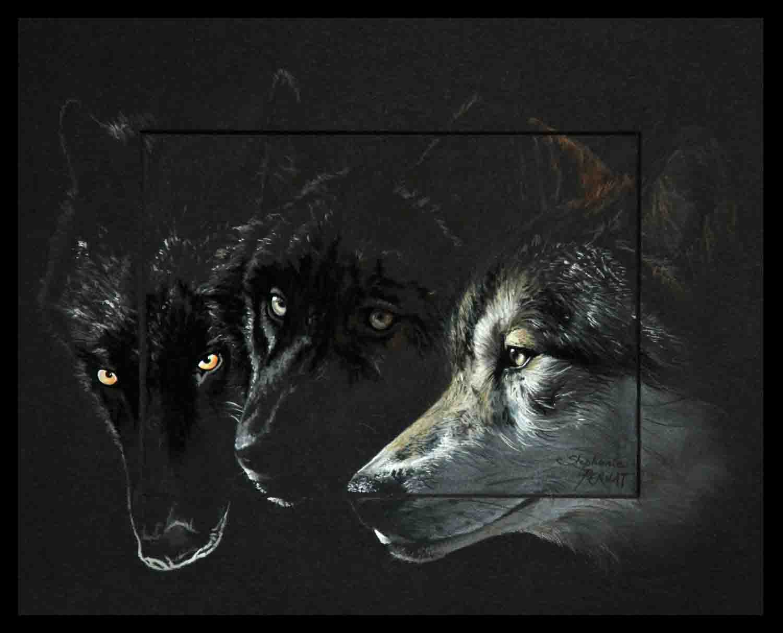 WOKWSES (loup en abénaki, tribue amérindienne - wolf in abenaki, indians of north america)-pastel sec (soft pastel)- 24x30cm