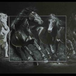 Galop originel - WAKIZA et autres races européennes - AV for sale part 01